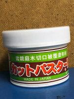 Wundverschlusspaste für Laubgehölze
